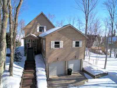 Alger County Single Family Home For Sale: E4312 Au Train Tr