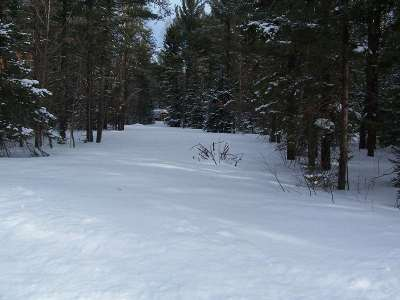 Negaunee Residential Lots & Land For Sale: 314 North Rd