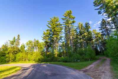Marquette Residential Lots & Land For Sale: 111 Ewing Pines Dr