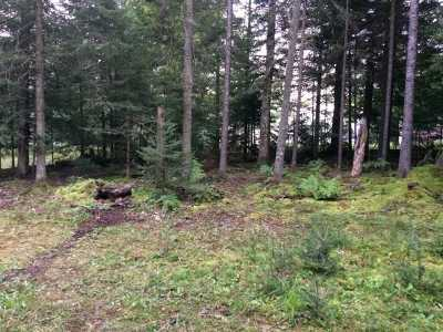 Gwinn Residential Lots & Land For Sale: 41 S Shag Lake Dr