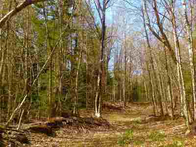 Ishpeming Residential Lots & Land New: Off Co Rd 510