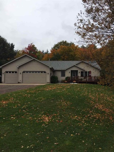 Ishpeming Single Family Home New: 1100 N Westwood Dr