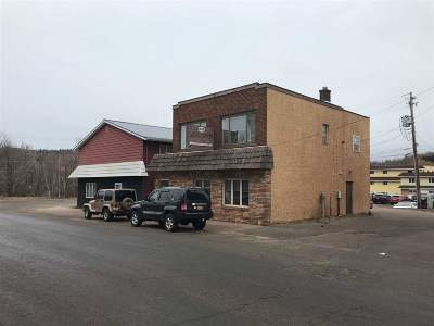 Negaunee Commercial For Sale: 208 Division St