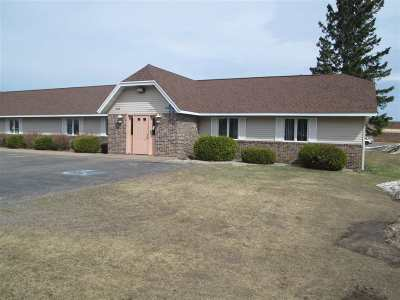 Ishpeming Commercial For Sale: 1000 Country Ln