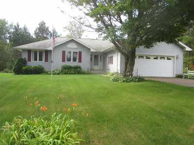 Marquette Single Family Home For Sale: 107 Ridgewood Dr