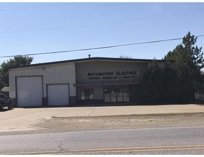 Negaunee Commercial For Sale: 202 Co Rd 480