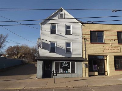 Marquette Commercial For Sale: 151 W Baraga Ave