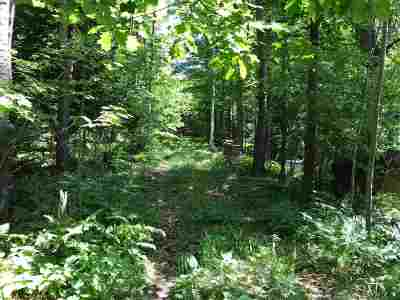 Marquette Residential Lots & Land For Sale: 2103 Badger St #1-8