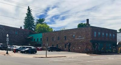 Marquette Commercial For Sale: 109 W Baraga St