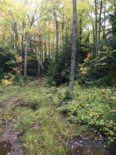 Gwinn Residential Lots & Land For Sale: Off Co Rd Eed