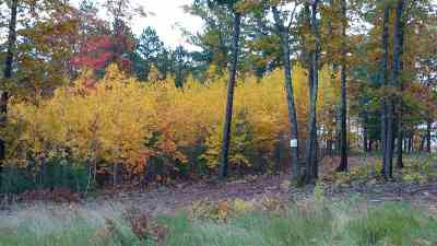 Marquette Residential Lots & Land Pending w/Contingency: Lot #23 Forestville Basin Tr #Site Num