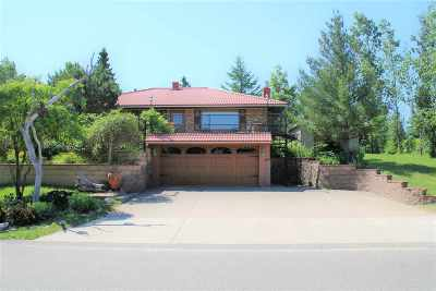 Marquette Single Family Home For Sale: 3001 Island Beach