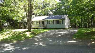 Marquette Single Family Home For Sale: 1000 N Vandenboom Ave