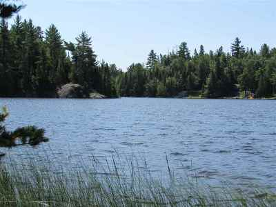 Michigamme Residential Lots & Land For Sale: Parcel 7 N Arfelin Lake Rd