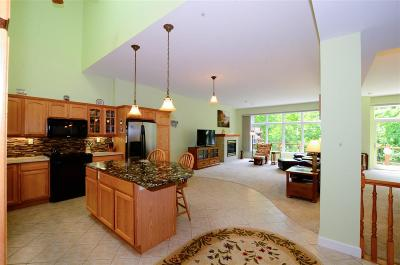 Marquette Single Family Home For Sale: 1043 Osprey Ct