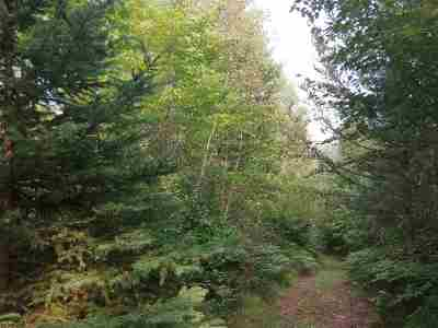 Ishpeming Residential Lots & Land Pending w/Contingency: 42 Acres Co Rd Pre