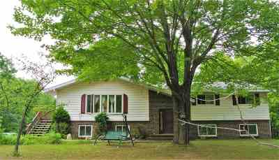 Negaunee Single Family Home For Sale: 199 Neejee Rd