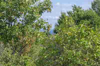 Marquette Residential Lots & Land For Sale: 810 Division St
