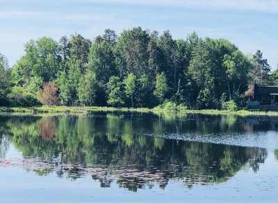 Gwinn Residential Lots & Land For Sale: 196 E Johnson Lake Rd