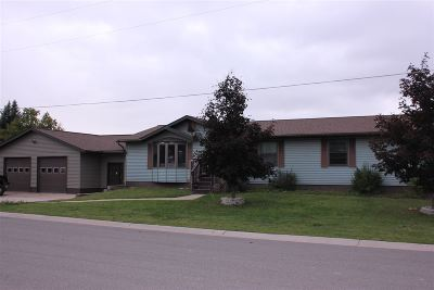 Munising Single Family Home For Sale: 1463 High St