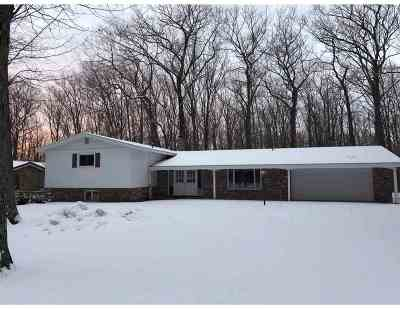 Marquette Single Family Home For Sale: 1004 Allouez Rd
