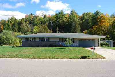 Munising Single Family Home For Sale: 1423 Washington St #Lat/Lon