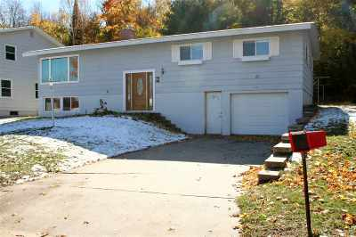 Munising Single Family Home For Sale: 218 E Varnum St