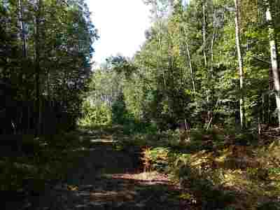 Ishpeming Residential Lots & Land For Sale: 40 Acres Red Rd