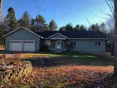 Marquette Single Family Home For Sale: 6655 S Us41