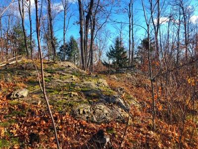Negaunee Residential Lots & Land For Sale: Holyolk Tr