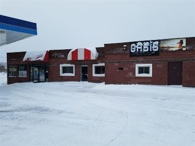 Ishpeming Commercial For Sale: 403 N Third St