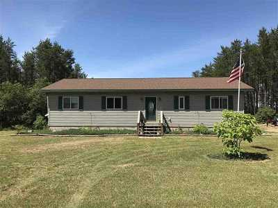 Gwinn Single Family Home For Sale: 508 Slough Lake Rd