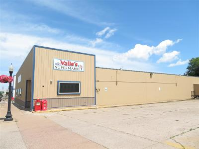 Marquette Commercial For Sale: 1034 N Third St