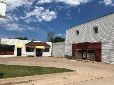 Marquette Commercial For Sale: 246 W Hewitt St
