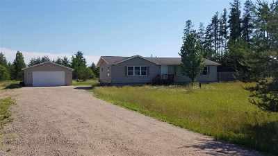 Gwinn Single Family Home For Sale: 1145 E M35