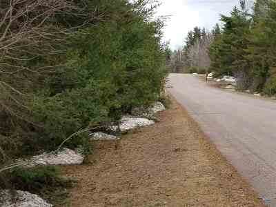Ishpeming Residential Lots & Land For Sale: 1045 River Ridge Dr