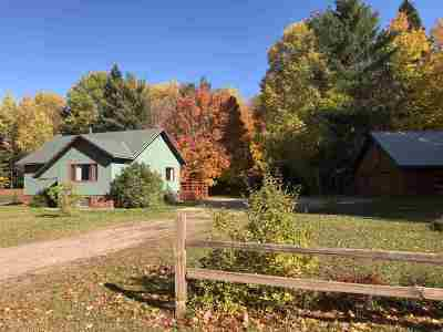 Marquette Single Family Home For Sale: 471 S Big Creek Rd