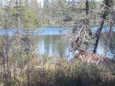 Michigamme Residential Lots & Land For Sale: 45 Acres Fence Lake Rd