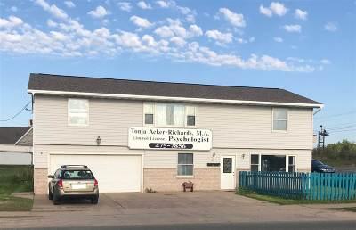 Negaunee Commercial For Sale: 82 Croix St