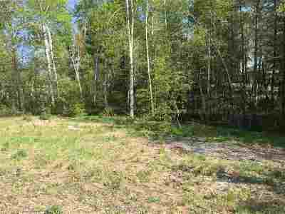Ishpeming Residential Lots & Land For Sale: 1695 Ellsworth St