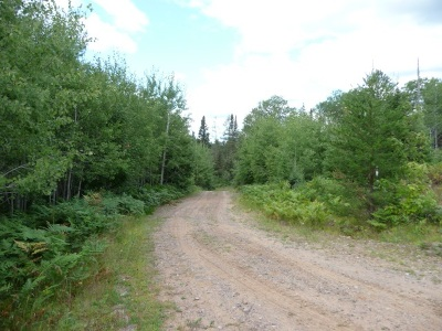 Gwinn Residential Lots & Land For Sale: Co Rd Mp
