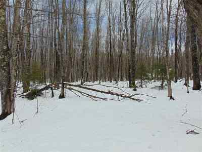 Negaunee Residential Lots & Land Pending w/Contingency: 302 Co Rd 510