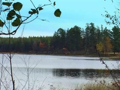 Gwinn Residential Lots & Land For Sale: Johnson Lake Rd