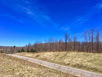 Negaunee Residential Lots & Land For Sale: TBD Co Rd 510 41.2 Acres West Parcel #2
