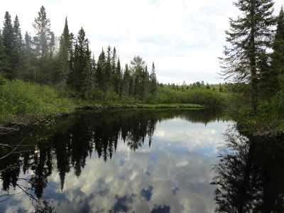 Michigamme Residential Lots & Land For Sale: 40 Acres Peshekee Grade