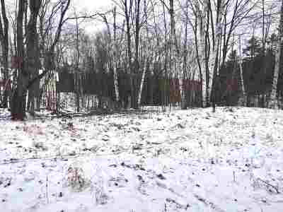 Ishpeming Residential Lots & Land For Sale: Birch