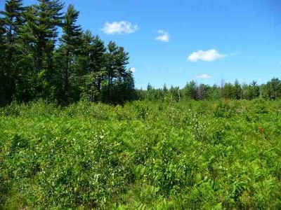Negaunee Residential Lots & Land New: Us41