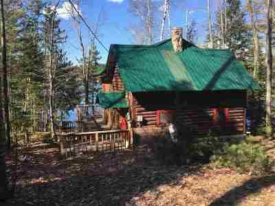 Gwinn Single Family Home For Sale: 1162 W Little Shag Lake Rd