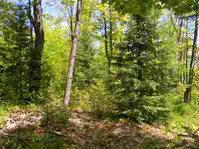 Michigamme Residential Lots & Land For Sale: Fence River Rd #NW-NE