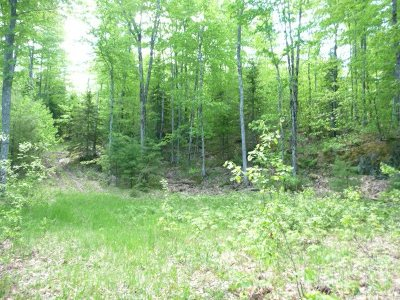 Marquette Residential Lots & Land For Sale: Lake Enchantment Rd #Parcel A